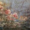 背景にインパクトを与えよう、美しい高解像度フリー塗り壁テクスチャ「50+ Free Hi-Res Painted Wall Textures」