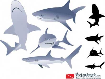 vector-animal01