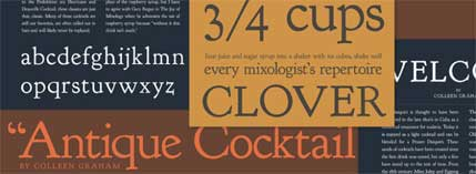 professional_fonts_05