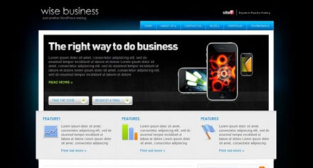 wise-business-e1275641695425