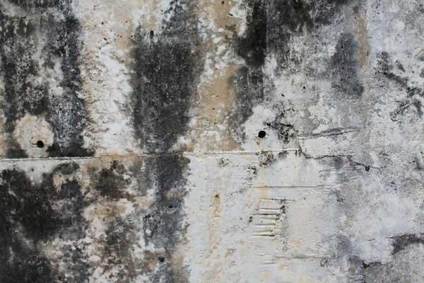 dd_concrete_02
