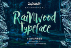Rainwood_brush_font