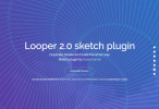 looper_example_top
