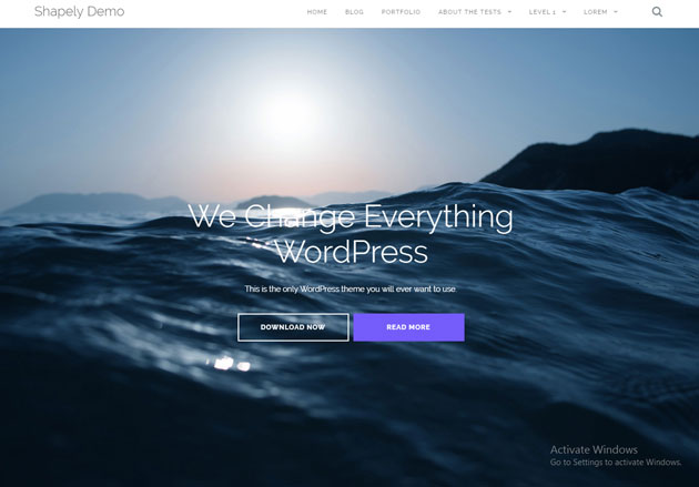 wordpresstheme9_02