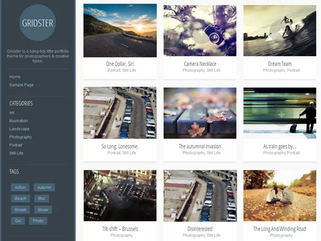 wordpresstheme9_03