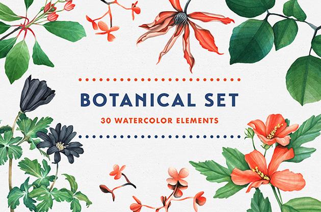 botanifree1