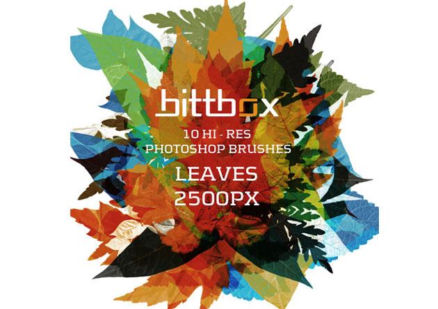 PhotoshopBrushes_leaf01