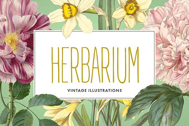 vintage-herbarium1