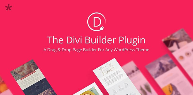 The-Divi-Builder